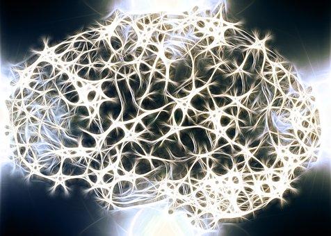 2つの脳内マリファナと受容体の発見