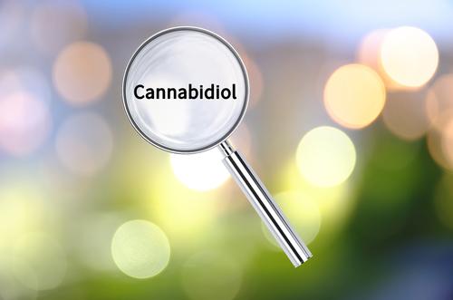薬物療法の新たな対象としてのエンドカンナビノイドシステム