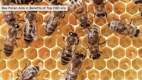 蜜花粉をミックスしたCBDオイルが人気