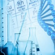研究:カンナビクロメン(CBC)が脳の発達に役立つ可能性