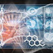 研究要約:カンナビノイドの薬理学