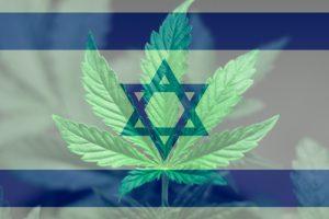 大麻が自閉症の子供に役立つ理由:イスラエルで臨床検査