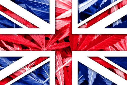 イギリスがシャーロッツ・ウェブの使用を認可