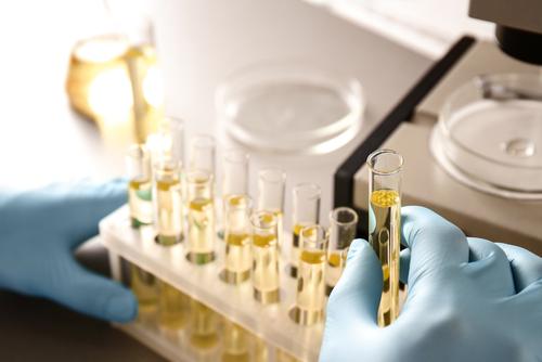 強力な抗酸化物質!THCとCBDの分子的側面を理解する
