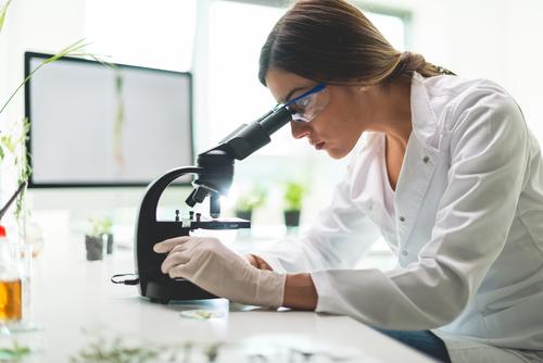 2018年前半の大麻研究最前線:パート2